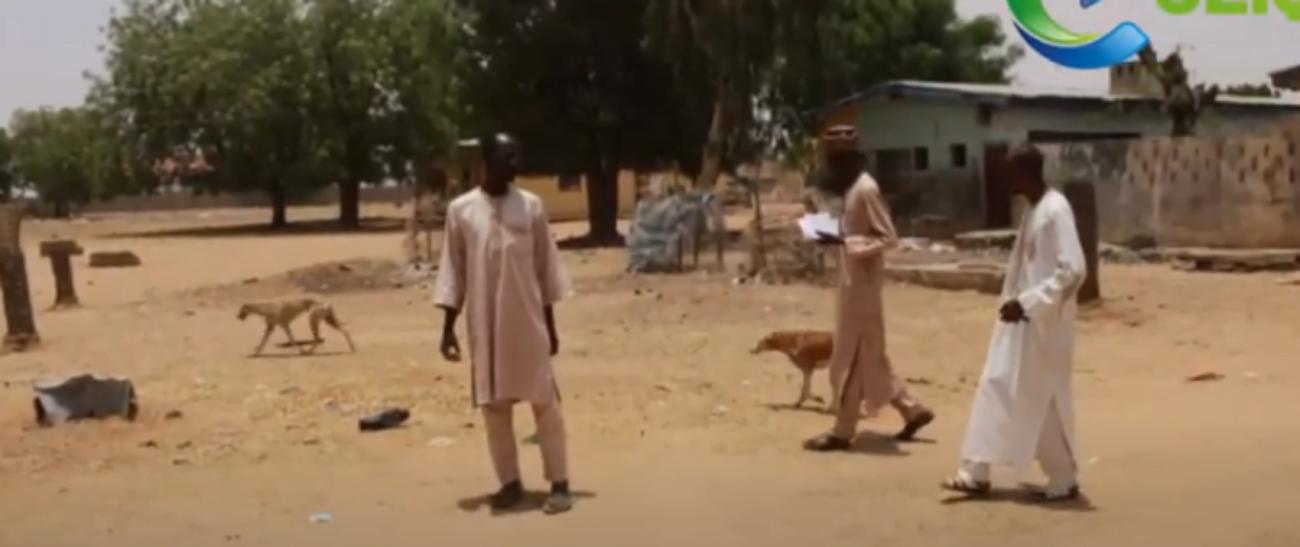 katsina govt deploy dogs to schools