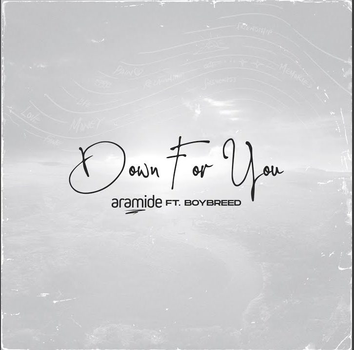 Aramide feat. Boybreed – Down For You
