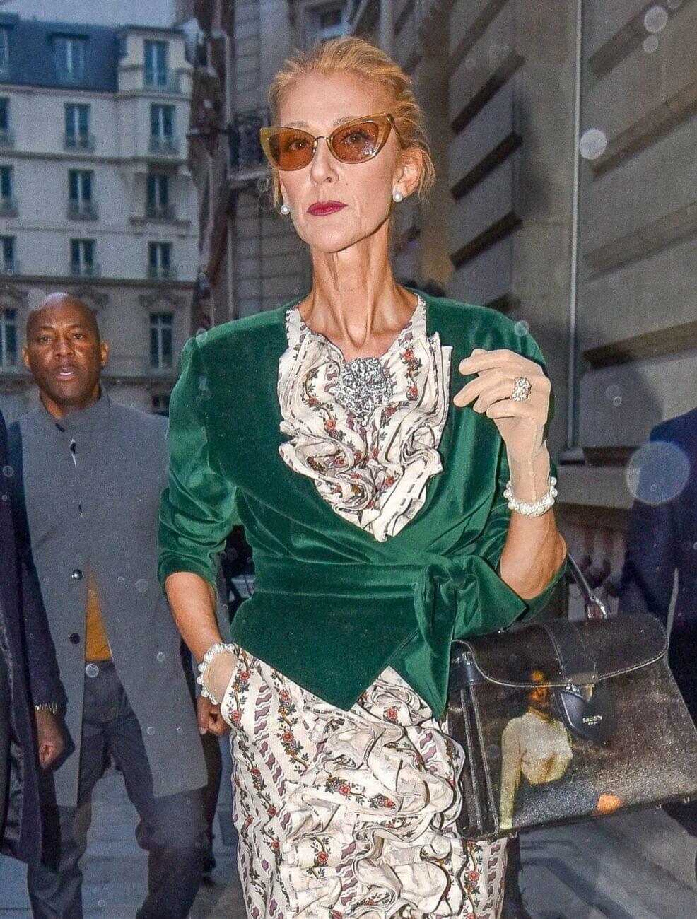 Celine Dion body-shamed
